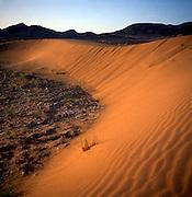 Barchan sand dune at dawn, Sahara desert, Zagora, Morocco