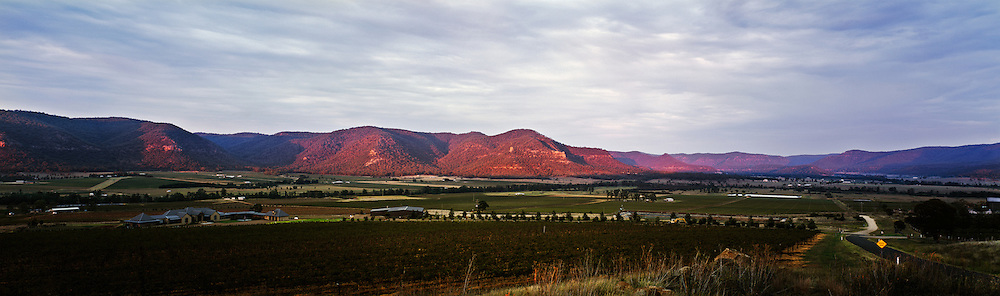 Sunrise over vineyards, Broke, Hunter Valley, Australia