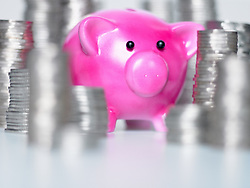 Dec. 14, 2012 - Piggy bank and stacks of coins (Credit Image: © Image Source/ZUMAPRESS.com)