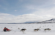 Barton Glasser / Daily Press.Lone Cone Conquest sled dog race near Norwood Saturday, Feb. 10.