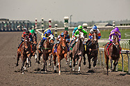 Thoroughbred horse racing, Keeneland, Lexington, Kentucky
