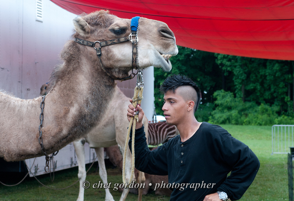 A worker awaits customers for camel rides at the Kelly Miller Circus in Greenwood Lake, NY on Monday June 15, 2015.  © Chet Gordon • Photographer