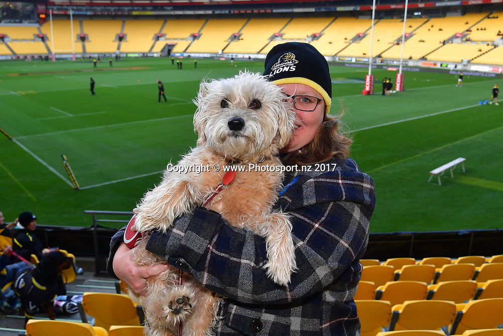Rugby fans with their dogs for the 'Crouch, Paws, Engage' day during the Mitre 10 Cup rugby match between  Wellington and Canterbury at Westpac Stadium in Wellington on Sunday the 17th September 2017. Copyright Photo by Marty Melville / www.Photosport.nz