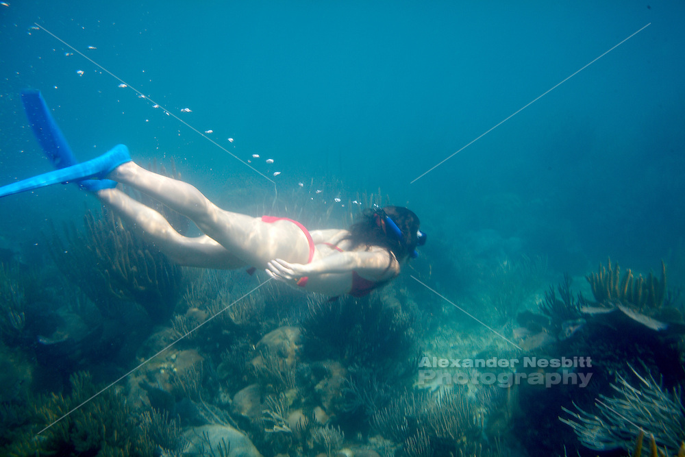Belize, Central America - Girl in red bikini snorkeling and free diving off Placencia.