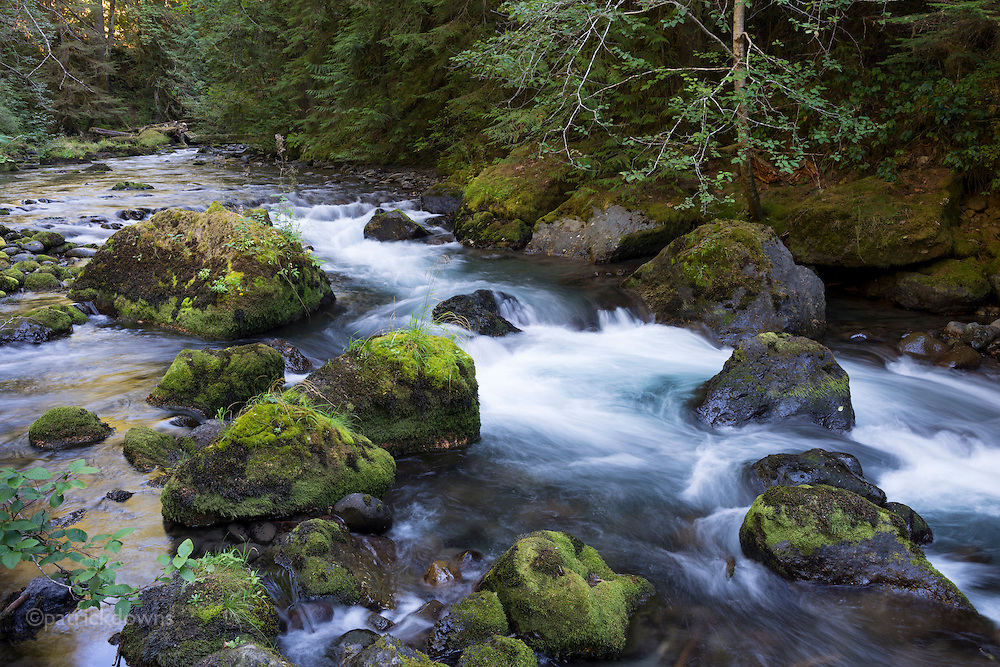 The second steepest river in the United States, the Dungeness River begins high on Mount Mystery in Olympic National Park, flowing into Dungeness Bay on the Strait of Juan de Fuca.