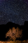 The Night Sky, from Phantom Ranch at the bottom of Grand Canyon National Park.