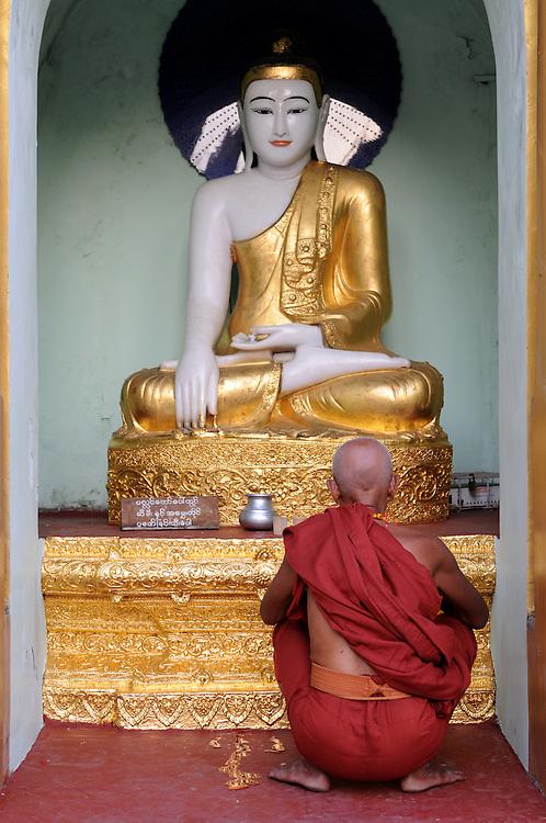 Praying pilgrim in the  Shwedagon Pagoda,Myanmar,Asia