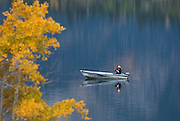 Fisherman in boat on Lower Twin Lake, with Aspen tree in Fall color; Toiyabe National Forest, Eastern Sierra Nevada Mountains, California..