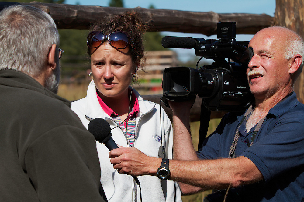 Journalist Judita Hrubesova and cameraman Sergey recording an interview about the future of two European Bison or Wisent (Bison bonasus) donated by Prague Zoo to Bieszczady National Park with large mammal specialist and head of Carpathian Wildlife Research Station (Stacja Karpacka), Kajetan Perzanowski. Bukowiec, Poland.
