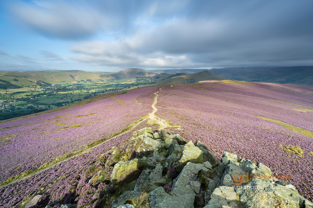 Fleeting sunlight and moving clouds above a heather covered Win Hill in full bloom. Views towards the Hope Valley and The Great Ridge. Edale and Kinder Scout can be seen to the right side. Summer in the Peak District, Derbyshire, England, UK. August, 2014.