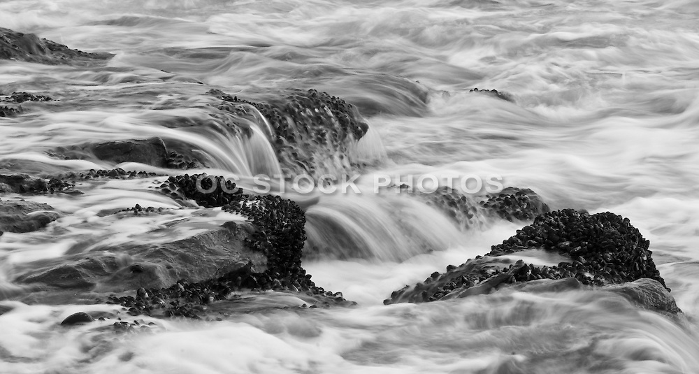 Black and White Seascape Photo of Laguna Beach California