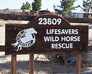 Life Savers Ranch