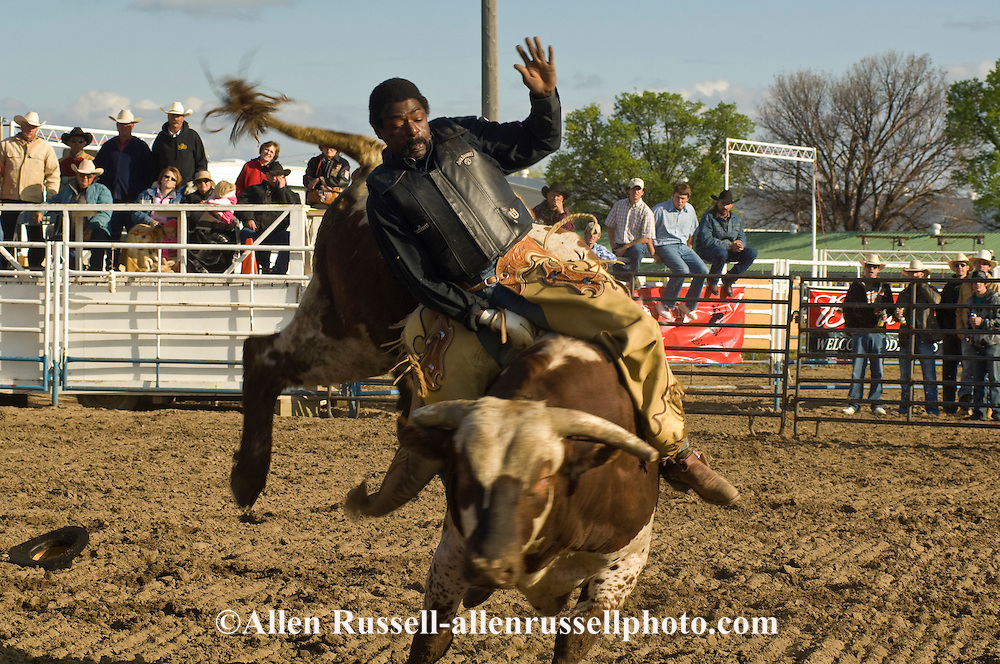 Bull Rider, Black Cowboy, Miles City Bucking Horse Sale, <br /> MODEL RELEASED on rider only