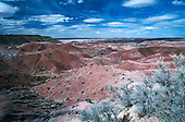 00299_Petrified_Forest_Natl_Park