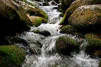 Stream near Glendalough and the Upper Lake, Ireland