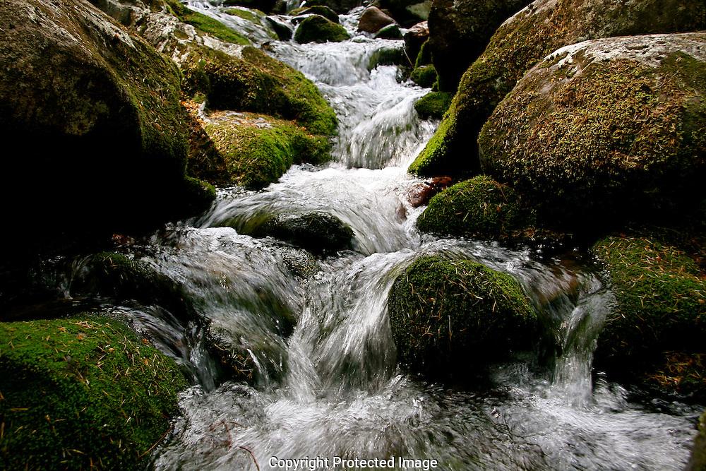 Stream near Glendalough and the Upper Lake, Ireland