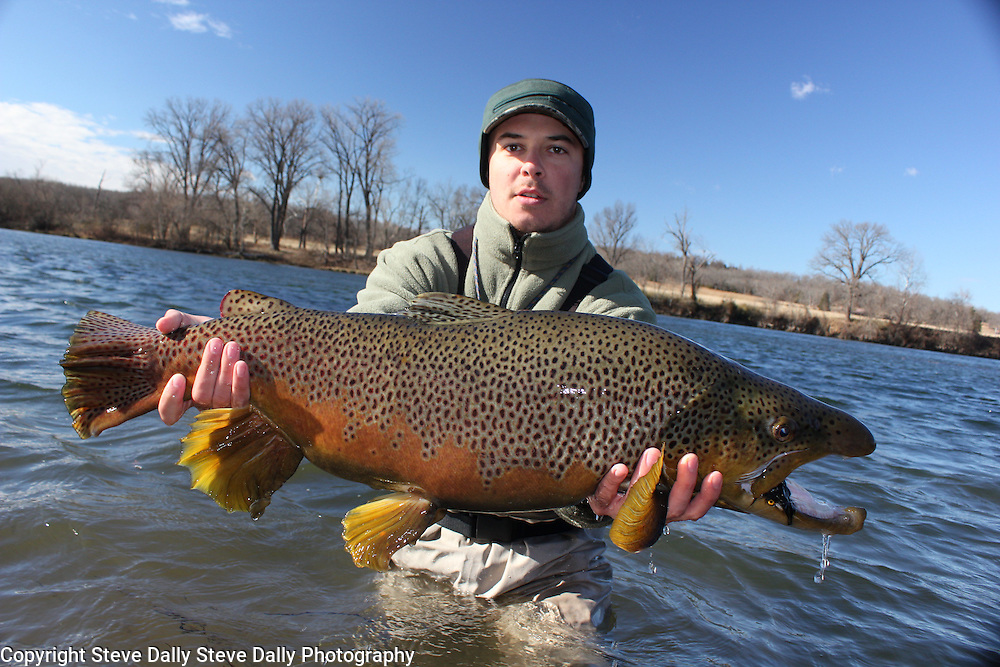 Gabe 39 s 32 brown trout02 cr2 steve dally photography for White river arkansas fishing report