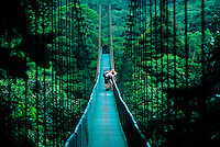 Hikers cross a suspended bridge in the rainforest on a the Treetop Walkway, Selvatura Park, near Monteverde, Costa Rica