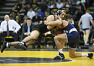 January 29, 2010: Iowa's Brent Metcalf tries to control Penn State's Frank Molinaro in the 149-pound bout at Carver-Hawkeye Arena in Iowa City, Iowa on January 29, 2010. Metcalf pinned Molinaro in 3:56 and Iowa defeated Penn State 29-6.