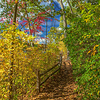 Lake Waban in Wellesley showing a magical mixture of fall foliage colors and a pathway along the banks of the pond. <br />