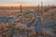 USA,Nevada,Mineral County, Tonopah