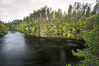 Myllykoski Pond im Oulanka Nationalpark