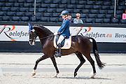 Nicole den Dulk - Wallace N.O.P.<br /> Nederlands Kampioenschap Para Dressuur 2016<br /> © DigiShots