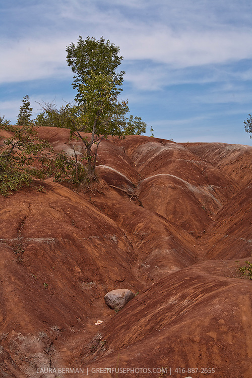 The Cheltenham Badlands, a UNESCO World Biosphere Reserve located in the Niagara Escarpment in Ontario, Canada.   The formation is mostly red in colour due to iron oxide deposits with some faint green streaks due to ground water percolation changing the red iron oxide into green iron oxide. The formation was exposed by poor farming practices in the 1930s that led to soil erosion and exposed the underlying shale.
