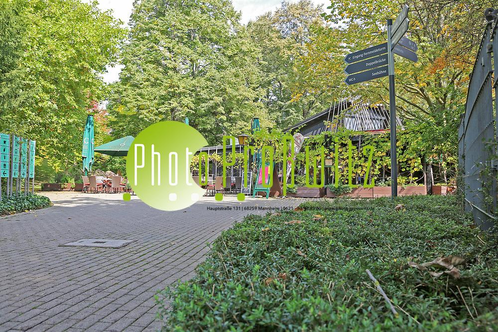 Mannheim. 28.09.17 | 27 Millionen f&uuml;r die Stadtparks<br /> Luisenpark. Bis 2025, wenn die Bundesgartenschau 1975 dann 50 Jahre zur&uuml;ckliegt, sollen in den Luisenpark 27 Millionen Euro investiert werden. Herzst&uuml;ck ist ein neues Erlebniszentrum rund um das Pflanzenschauhaus, das umfangreich modernisiert und ausgebaut werden soll - mit Restaurant, Insektarium sowie einem &uuml;berdachten, geheizten Ruhe- und Entspannungsbereich.<br /> <br /> <br /> BILD- ID 1048 |<br /> Bild: Markus Prosswitz 28SEP17 / masterpress (Bild ist honorarpflichtig - No Model Release!)