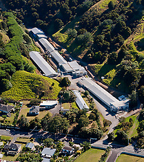 Whangarei-File photo of Forest Hill Farm poultry complex