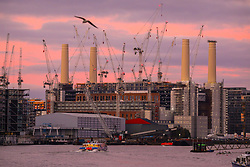 © Licensed to London News Pictures. 20/11/2019. London, UK. Sunrise over the many cranes and chimneys at Battersea Power Station development as the weather continues to be bright but chilly. Photo credit: Alex Lentati/LNP