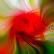 Red green and white garden Digitally enhanced image