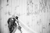 Anna-Kay & Ryan's gorgeous Roseville Estate summer wedding