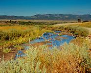 *Colorado Ecosystems