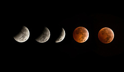 ***COMPOSITE PICTURE***© Licensed to London News Pictures. 08/10/2014. Los Angeles, UK A Blood moon total lunar eclipse visible in the night sky over downtown Los Angeles, and much of the west coast of North America in the early hours of Wednesday. Photo credit : David Fearn/LNP. Photo credit : David Fearn/LNP