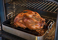 Traditional holiday meal, oven roasted turkey.