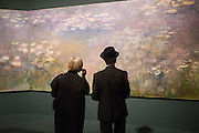 EILEEN COOPER; DAVID REMFRY, Painting the Modern Garden: Monet to Matisse Royal Academy of Art. Piccadilly, London. 26 January 2016