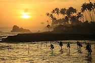 Stilt Fishermen, Unawatuna Sri Lanka