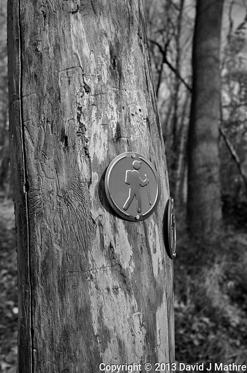 Rock Mill Preserve Opening. Sunday in the Park. Montgomery Township, New Jersey. Image taken with a Leica X2 Camera.