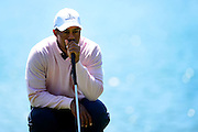 Tiger Woods of the U.S. looks at his putt on the 12th green during the 2013 Tavistock Cup golf tournament  at Isleworth Golf and Country Club in Windermere, Florida March 26, 2013. ©2013 Scott A. Miller