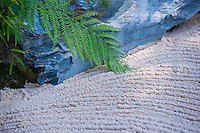 Japanese minimalist garden with sand, rocks and fern. note raked pattern