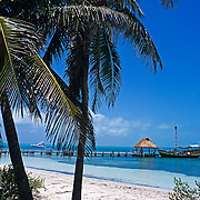 Contoy Island..Quintana Roo, Mexico.
