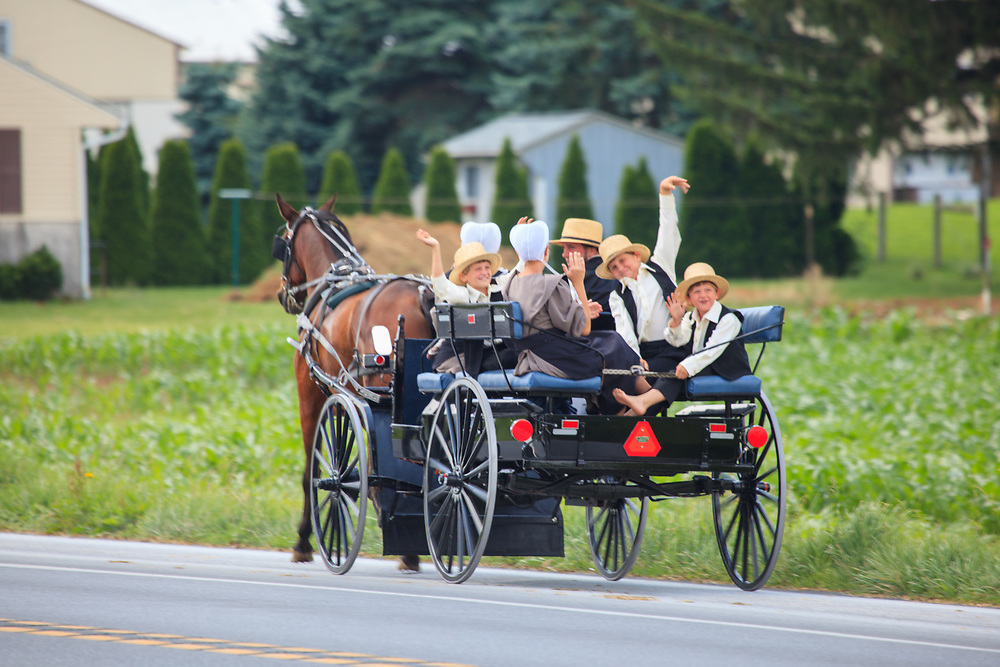 An Amish family in an open horse-drawn wagon.