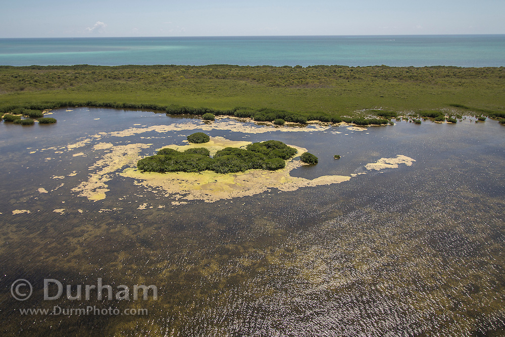 Part of the northern key islands in Biscayne Bay National Park, Florida.
