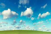 Man on a wide open green field - manipuated photograph