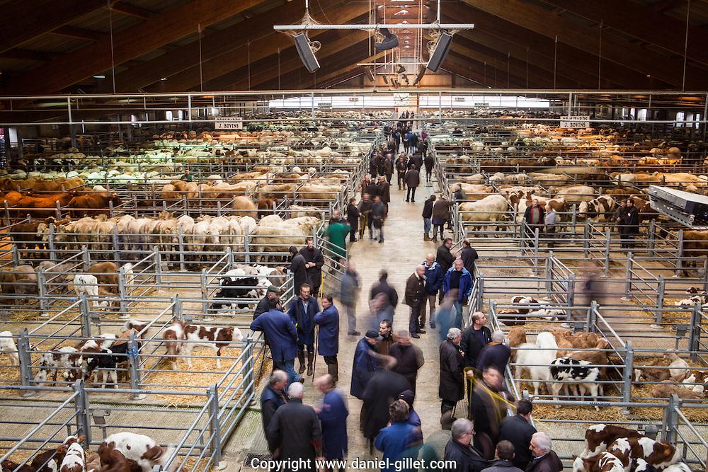 Foirail de la Chambiere, marché au bestiaux de Bourg-en-Bresse
