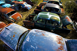 July 21, 2019 - Junkyard Of Cars (Credit Image: © Richard Wear/Design Pics via ZUMA Wire)