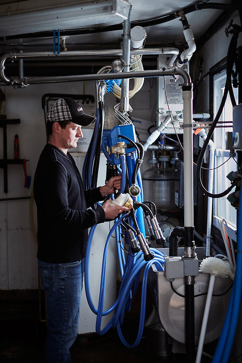 Dairy Farmer working with one of his milking machines in the barn shot as a Environmental Portraiture on a Fuji