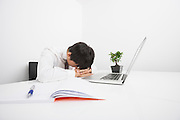 Over-worked mid adult businessman sleeping by laptop at desk