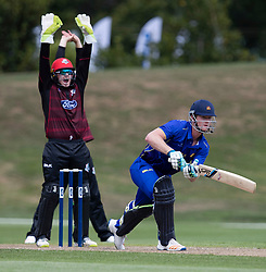 Canterbury's Tom Latham, left, appeals unsuccessfully for the wicket of Otago Volts' Jimmy Neesham in the Ford Trophy one-day domestic cricket match at the University of Otago Oval, Dunedin, New Zealand, Saturday, January 27, 2018. Credit:SNPA / Adam Binns ** NO ARCHIVING**